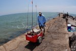 Pushcart on the jetty