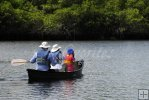 Exploring mangrove country by canoe
