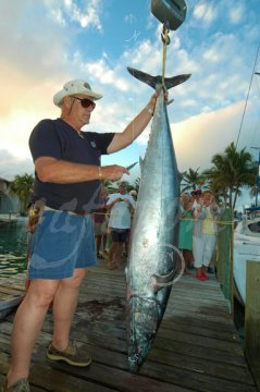 Weighing 101-pound wahoo