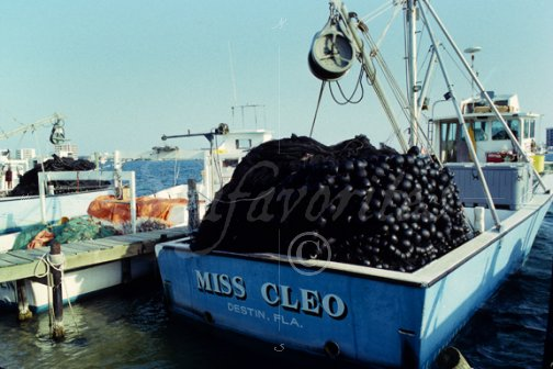 Purse seiner in destin florida purse seining 10 stock for Commercial fishing florida