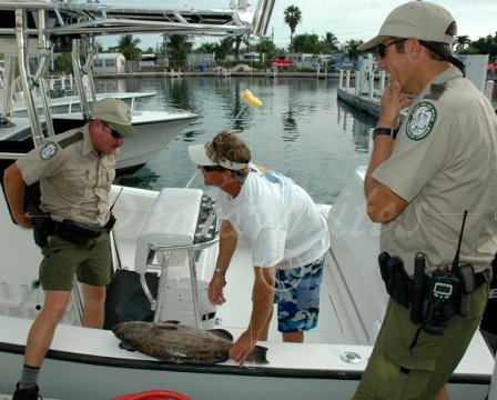 Florida fish and wildlife officer job description for Fishing jobs in florida