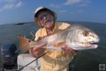 Jetty redfish
