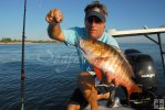 Small boat with mutton snapper