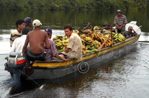 Image result for banana boat honduras