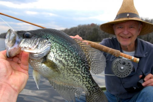 Crappie on fly rod