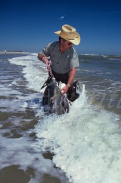 Texas game warden texas warden 10 stock photography by for Fish and game warden
