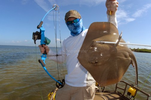 Saltwater bowfishing stock photography by seafavorites for Saltwater pier fishing